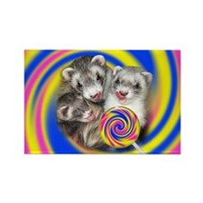 Ferrets with Lollipop Rectangle Magnet