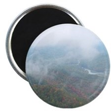 """After the Rain Fern Lake 2.25"""" Magnet (10 pack)"""
