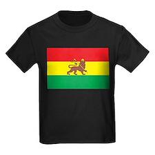 Ethiopia Flag 1897 T