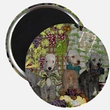 Bedlington Terrier Winery Magnet