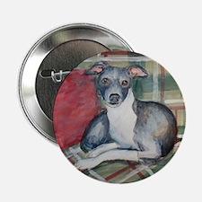 An Italian Greyhound Button