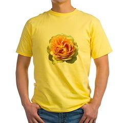 Yellow Rose T