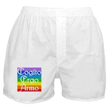 Cogito Rainbow 2 Boxer Shorts