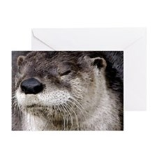 Otter Greeting Cards (Pack of 6)
