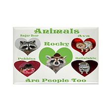 Raccoon and Pomeranian Rectangle Magnet
