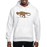 Allosaurus Dinosaur Hooded Sweatshirt
