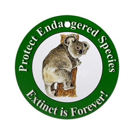 protecting endangered species essay Many people consider that the protection of endangered species can be explained by quite obvious reasons, but some people still question why it is important to save.