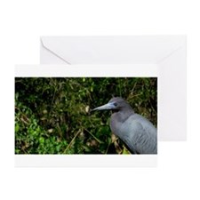 QPS P07: Greeting Cards (Pk of 10)