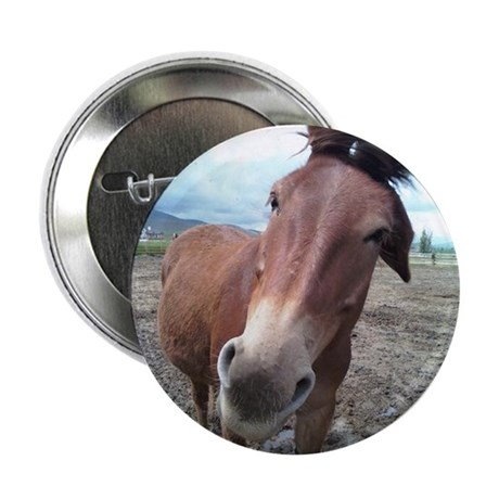 "Josie, the mule 2.25"" Button"