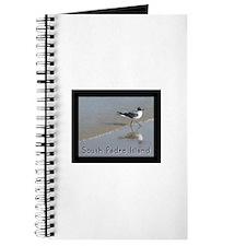 South Padre Island, TX seagul Journal