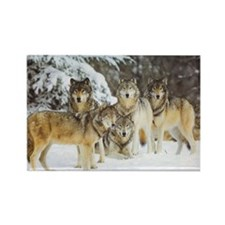 """Wolf Pack"" Rectangle Magnet"
