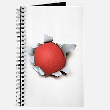 Dodgeball Burster Journal