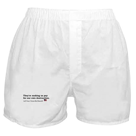 Paying for Destruction Boxer Shorts