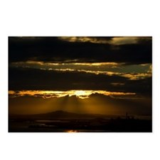 Auckland Golden Glow Postcards (Package of 8)
