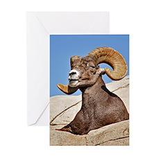 Ram Greeting Card