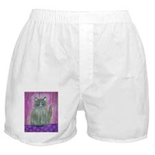 Brown Cat in Pink Room Boxer Shorts