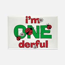 ONEderful Ladybug Birthday Rectangle Magnet