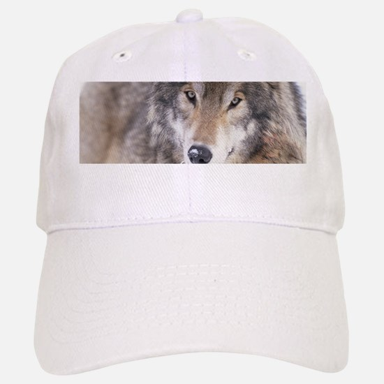 Wolf Gaze Baseball Baseball Cap