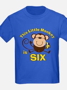 Little Monkey 6th Birthday Boy T