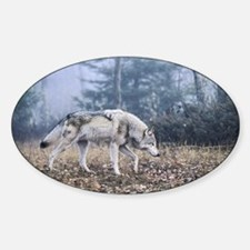 Grey Wolf - On the Prowl Oval Decal