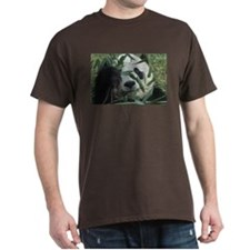 Peek-A-Boo Panda Dark T-Shirt
