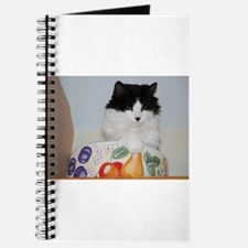 Cat in a Fruit Bowl Journal