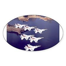Thunderbirds Oval Decal