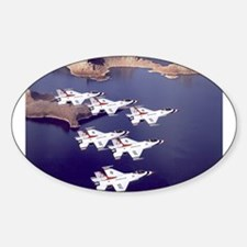 Thunderbirds Oval Decal