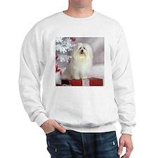 Maltese Holiday Dog Sweatshirt