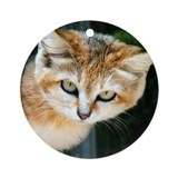 Sand cat Round Ornaments