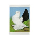 Russian Pigeon Rectangle Magnet (100 pack)