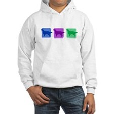 Color Row English Setter Hoodie