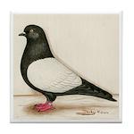 Black Whiteside Roller Pigeon Tile Coaster