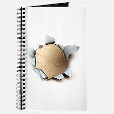 Volleyball Burster Journal
