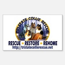 TSCR 2 Rectangle Sticker 10 pk)