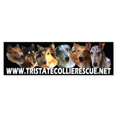 TSCR 1 Bumper Sticker
