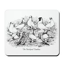 Shortface Tumbler Pigeons Mousepad