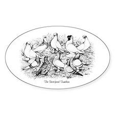 Shortface Tumbler Pigeons Oval Decal