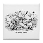 Shortface Tumbler Pigeons Tile Coaster