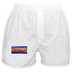 Class of 13 Futuristic Boxer Shorts