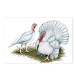 Beltsville White Turkey Postcards (Package of 8)