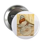 Mealy English Trumpeter Pigeo Button