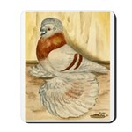 Mealy English Trumpeter Pigeo Mousepad
