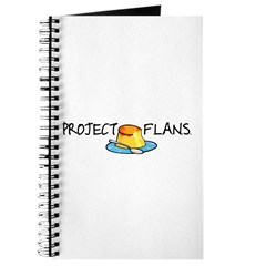 Project F.L.A.N.S. Journal