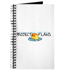 Project F.L.A.N.S. Full Logo Journal