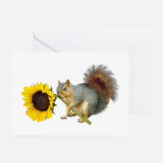 Squirrel Sunflower Greeting Cards (Pk of 20)