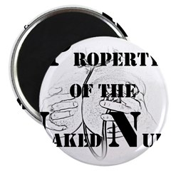 Property of (2) Magnet