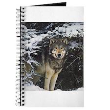 """""""Wolf Stare"""" Journal"""