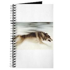 """Running Wolf"" Journal"