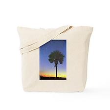 South Carolina State Flag Tableau Tote Bag
